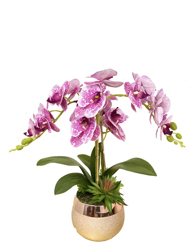 Orchid Vase 02
