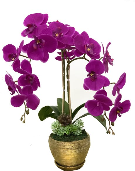 Orchid Vase 03
