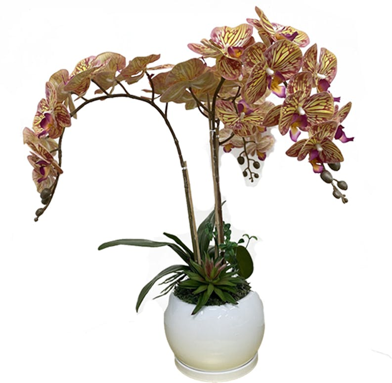 Orchid Vase 04