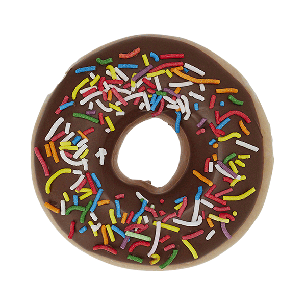 Chocolate Iced Glazed with Sprinkles